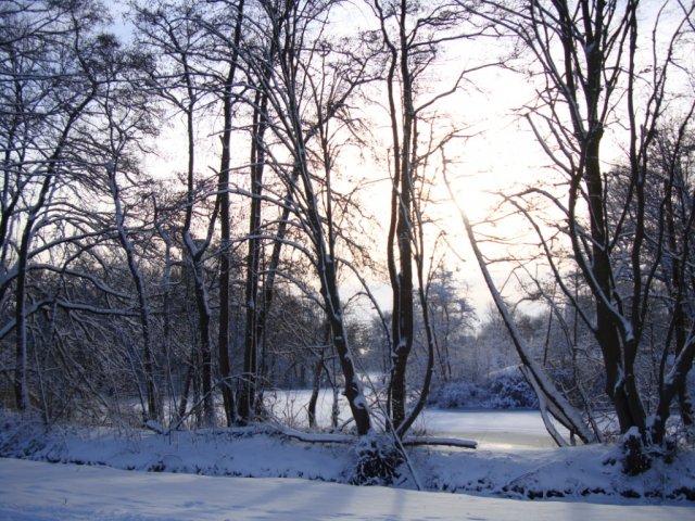 Winterheading